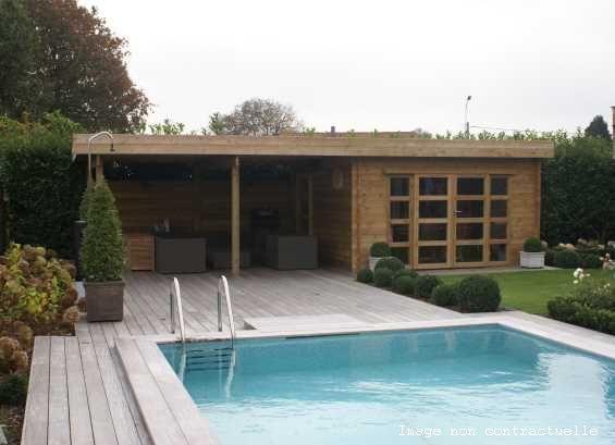 Abri jardin chalet bungalow garages ossature en bois for Pavillon de jardin moderne